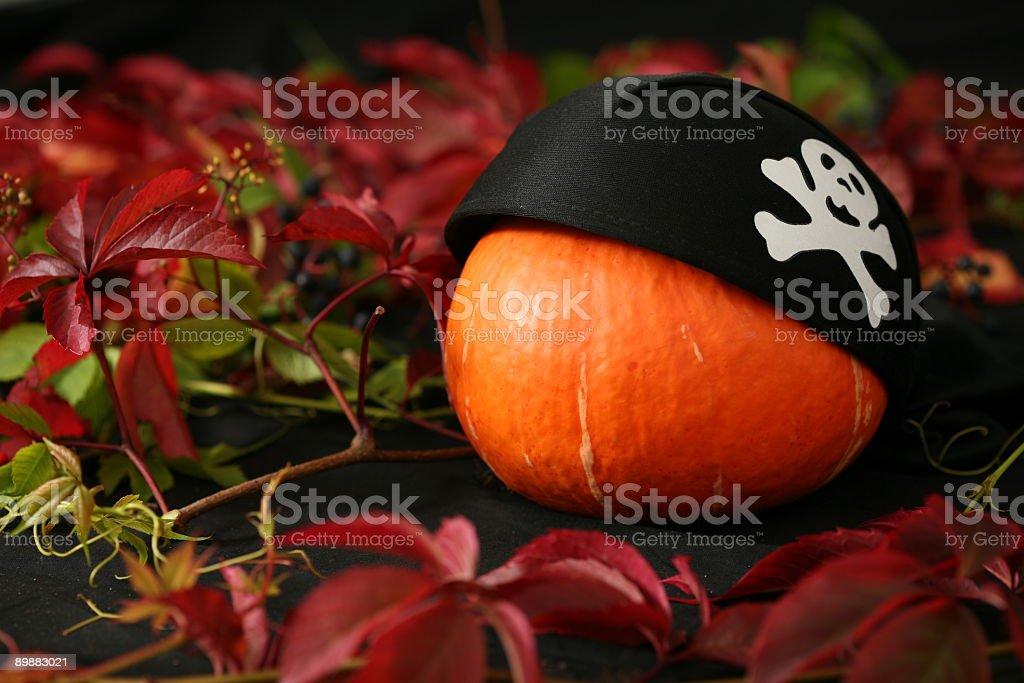 Pumpkin head royalty-free stock photo