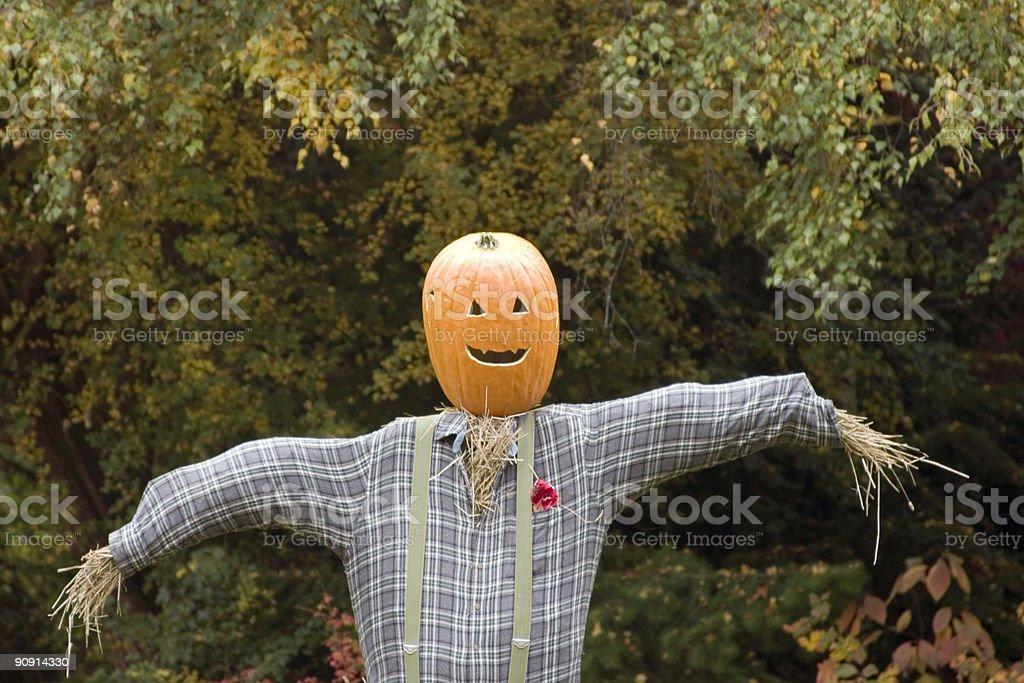 Pumpkin head scarecrow stock photo
