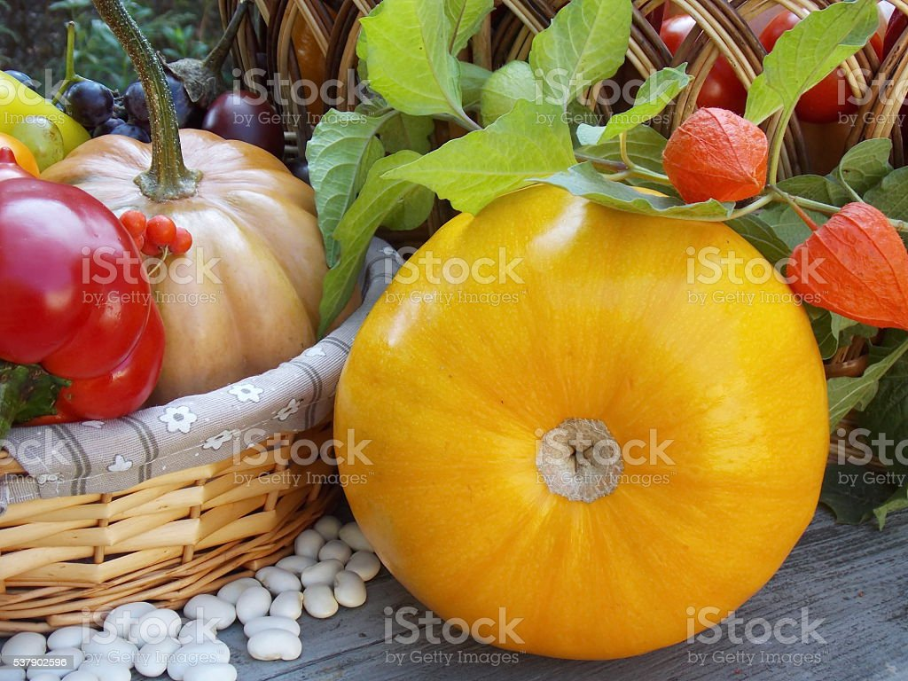 Pumpkin near Bean and Basket on Wood Texture stock photo