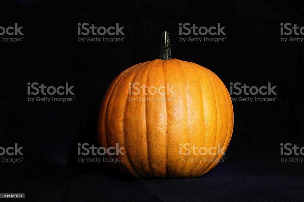 Pumpkin on Black Background stock photo