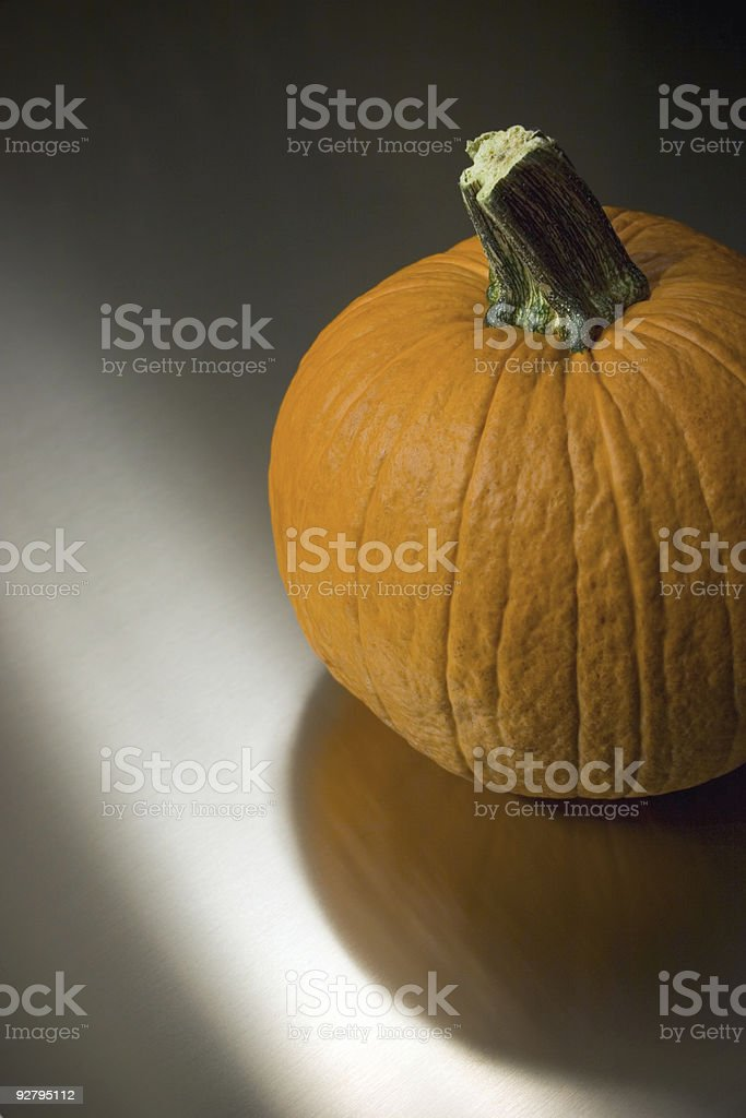 Pumpkin on Stainless Steel royalty-free stock photo