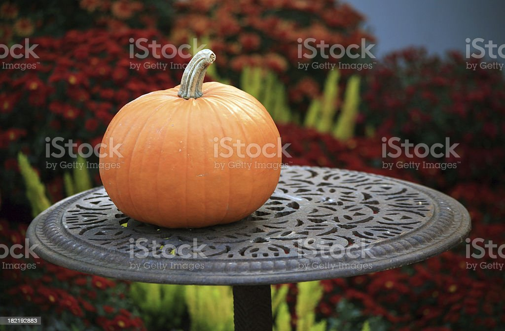 Pumpkin on table royalty-free stock photo
