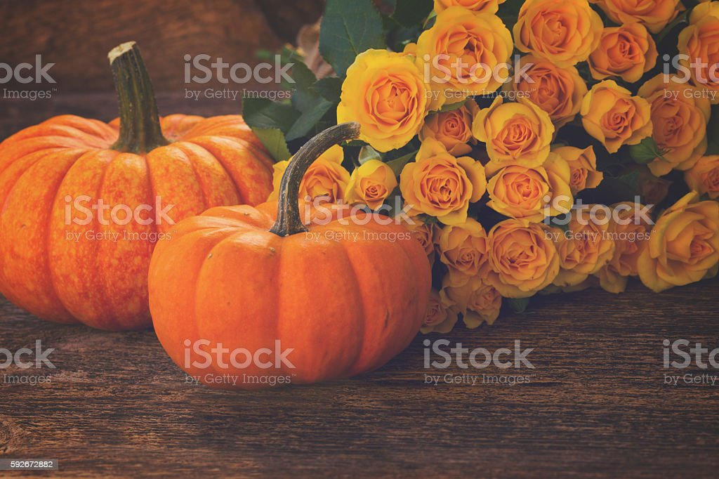 pumpkin on table stock photo