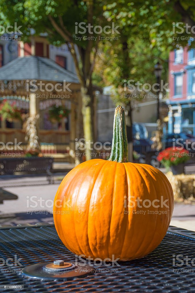 Pumpkin on the Table stock photo