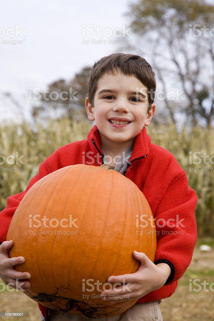 Pumpkin Picking stock photo