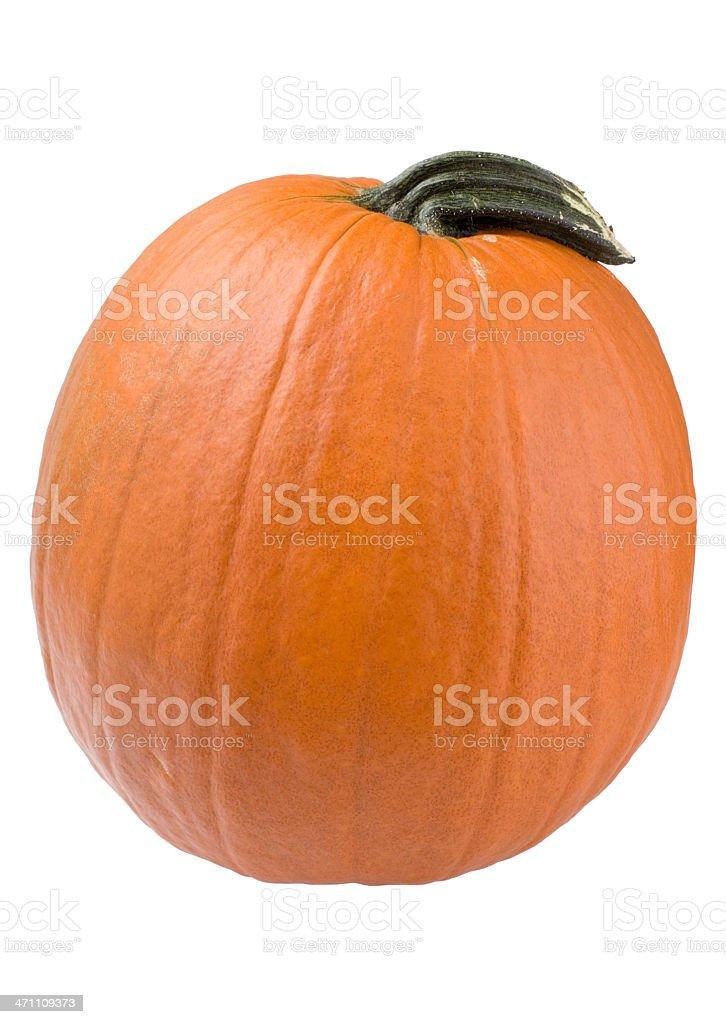 pumpkin (XL) royalty-free stock photo