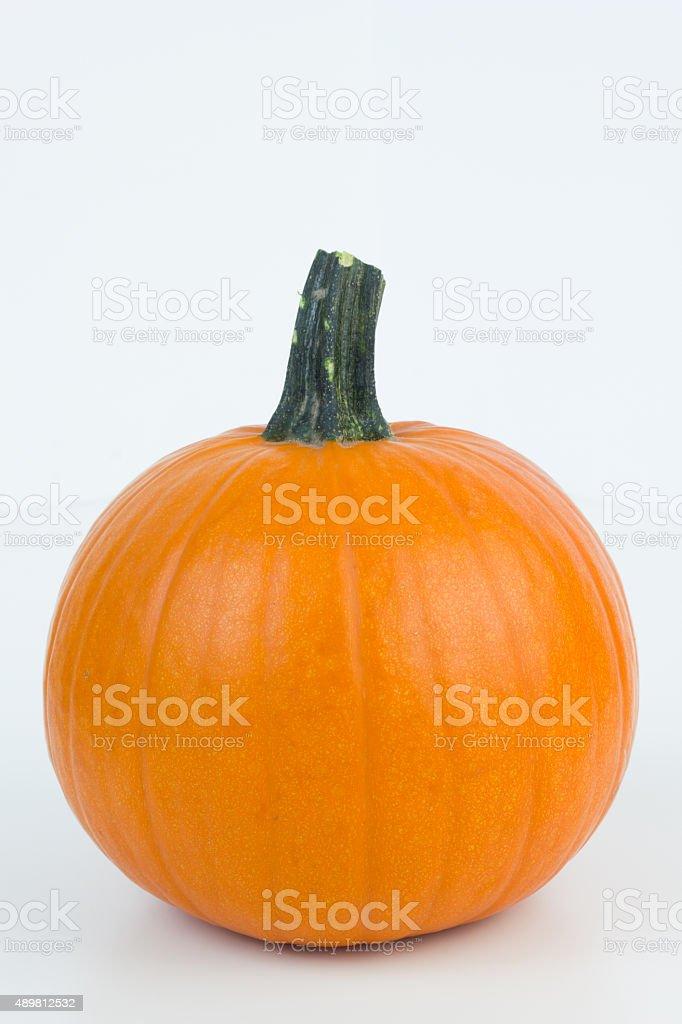 Pumpkin. stock photo