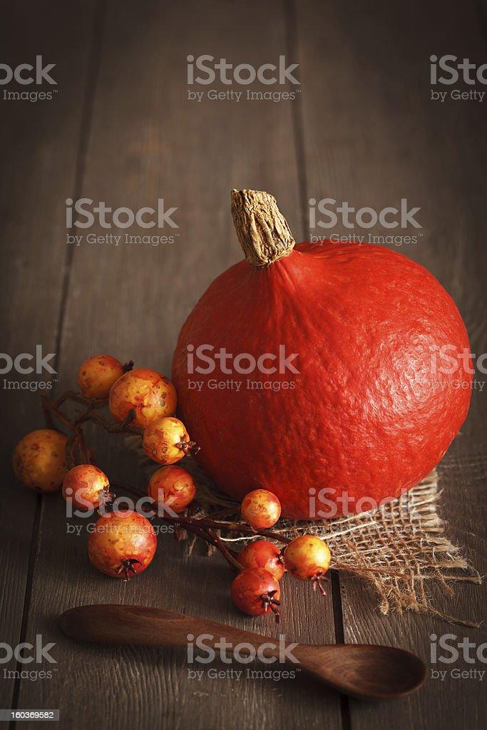 Pumpkin Still life royalty-free stock photo