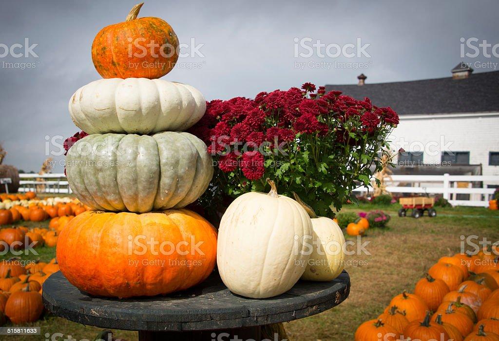 Pumpkin Tower stock photo