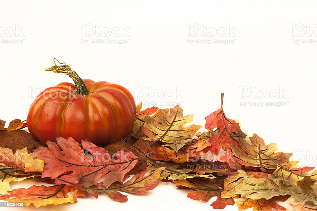 Pumpkin with Fall Leaves royalty-free stock photo