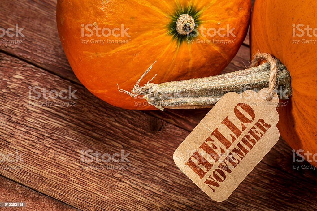 pumpkin with Hello November tag stock photo