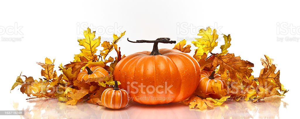 Pumpkins and Autumn leaves on a white background royalty-free stock photo