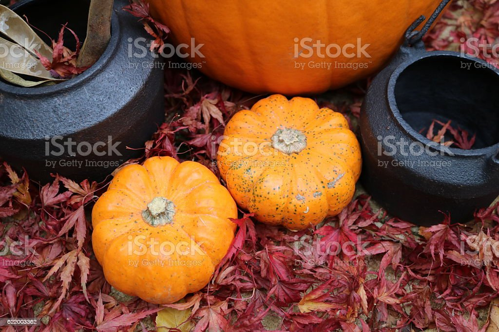 Pumpkins and cauldrons from an angle stock photo