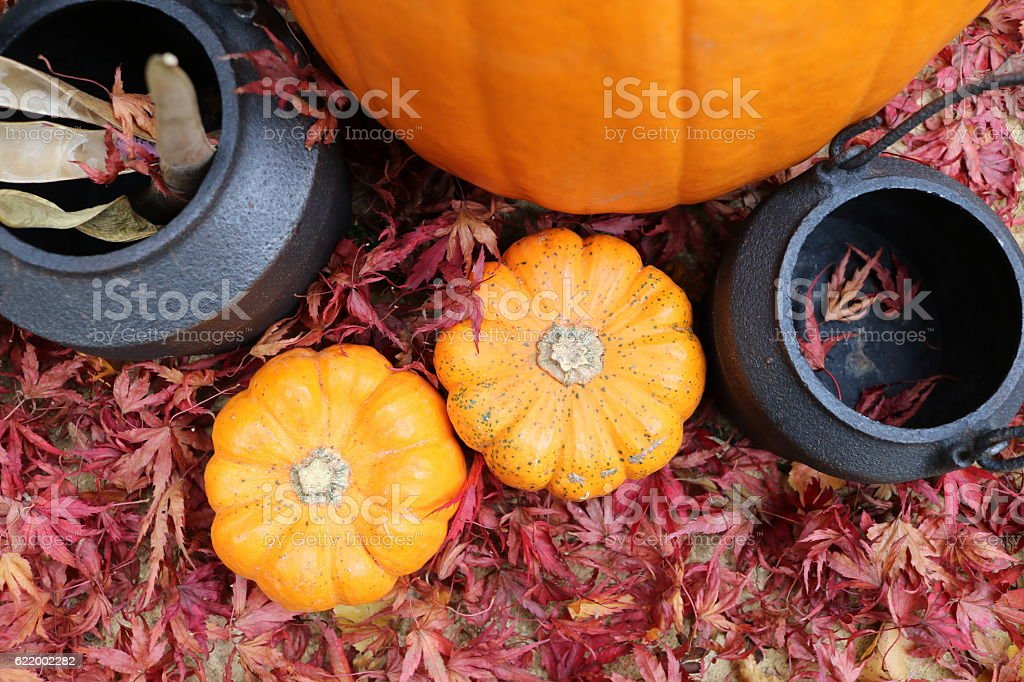 Pumpkins and cauldrons in red leaves from above stock photo
