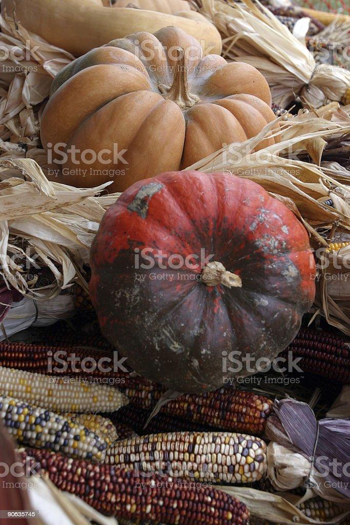 Pumpkins and Corn at Farmer's Market royalty-free stock photo