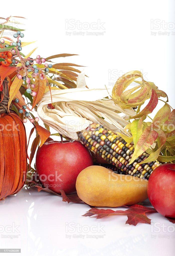 Pumpkins and fall beries stock photo