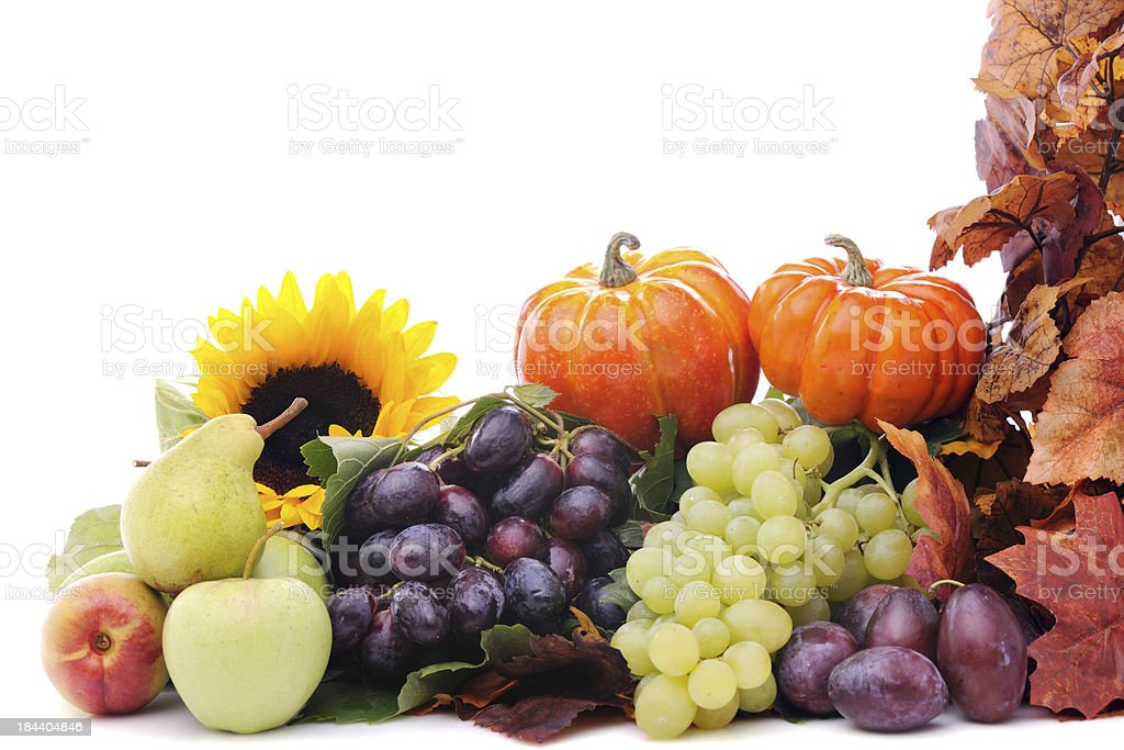 Pumpkins and fruits with maple leaves stock photo