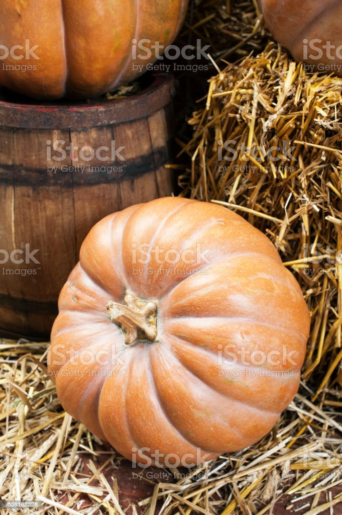 Pumpkins and straw in old barn stock photo