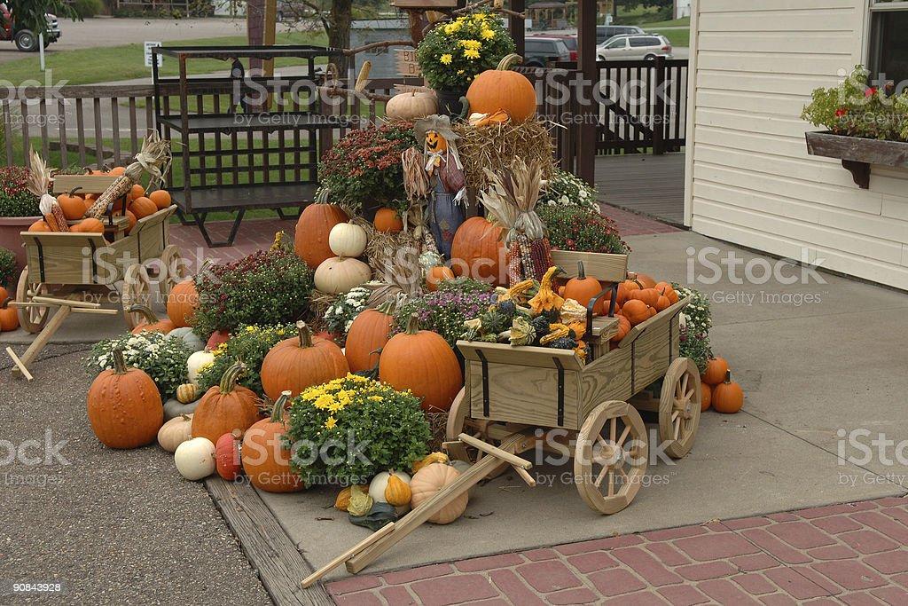 pumpkins arrangement royalty-free stock photo