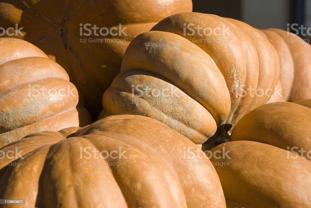 Pumpkins as Sculpture stock photo