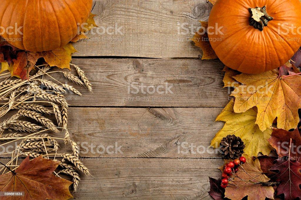 Pumpkins autumn leaves bird's eye thanksgiving day on wooden planks stock photo