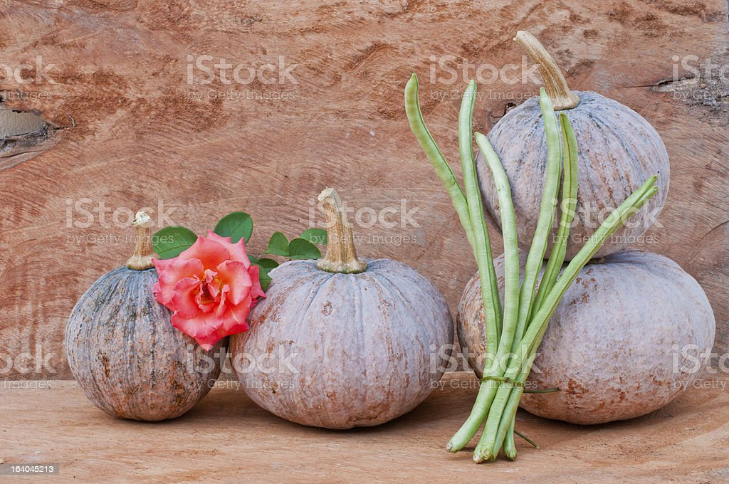 pumpkins, flower and cowpea stock photo