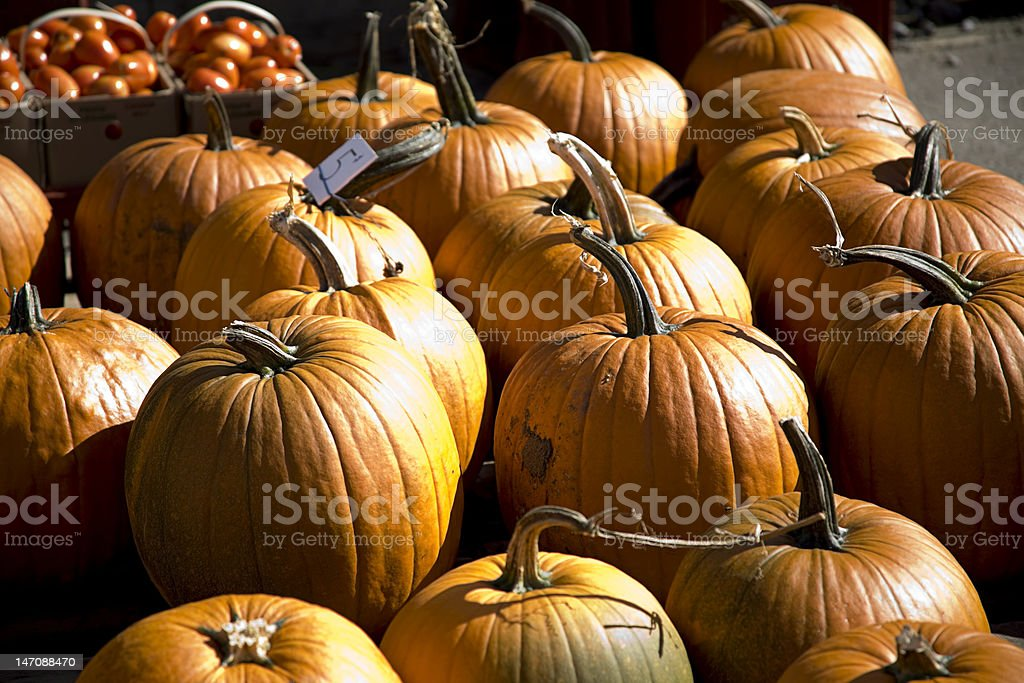 Pumpkins for sale at farmers market stock photo