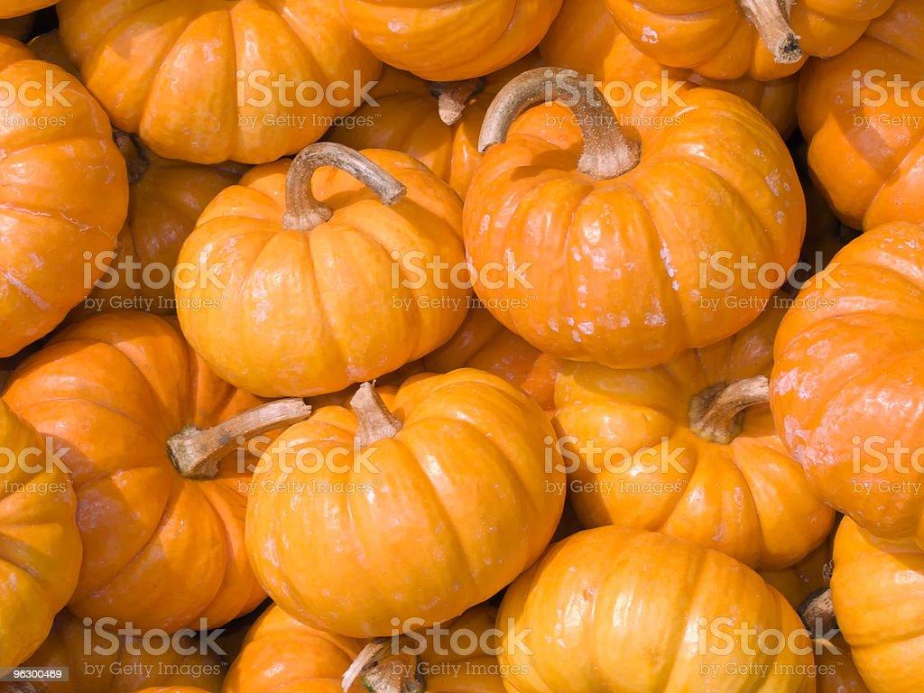Pumpkins, Halloween, Fall, Autumn, Harvest, Jack-o-Lantern, Season royalty-free stock photo