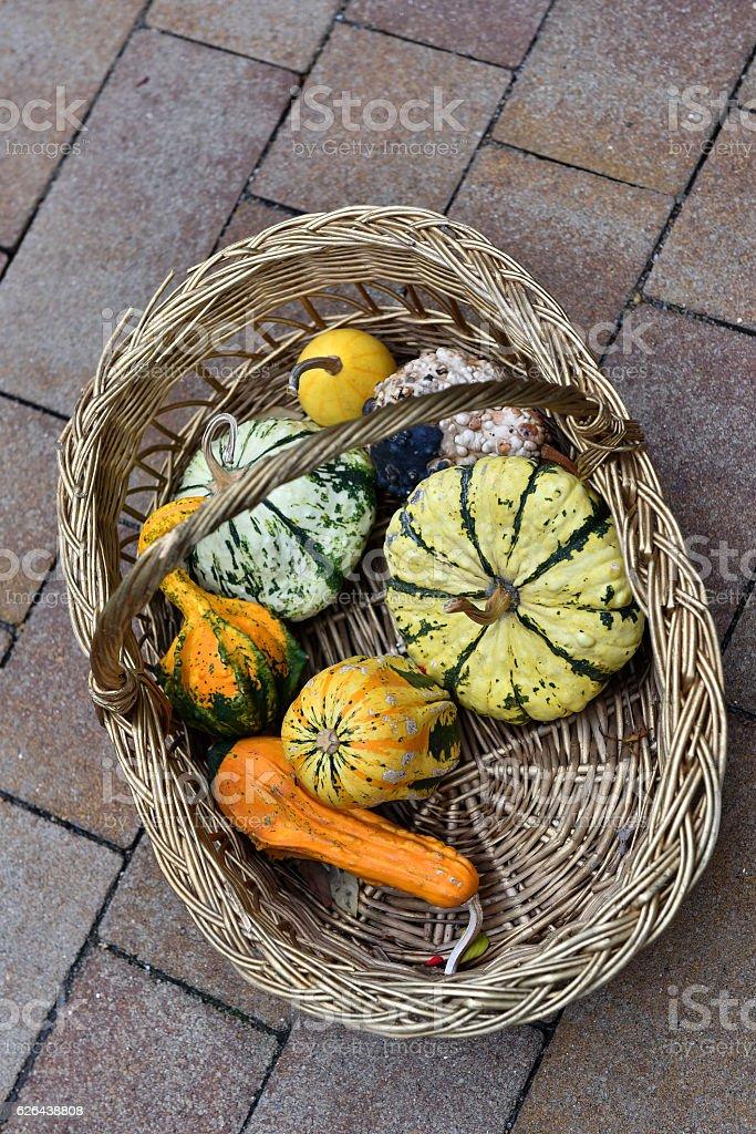 Pumpkins in a basket stock photo