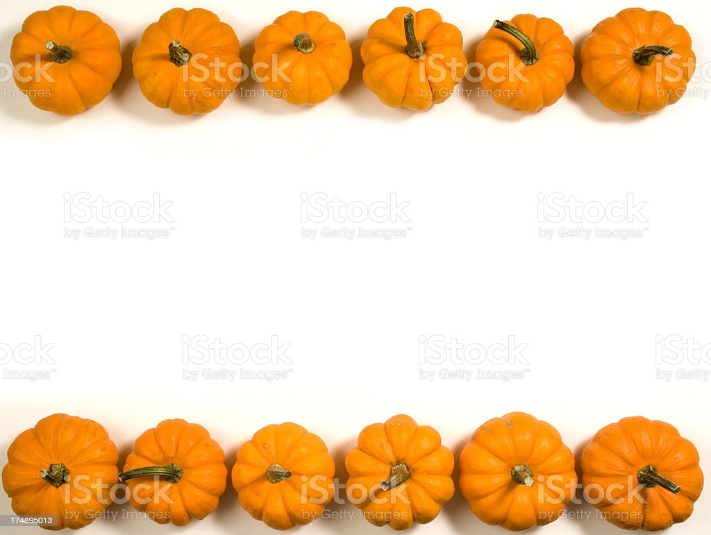 Pumpkins in a Row, Autumn Party Frame Background on White stock photo