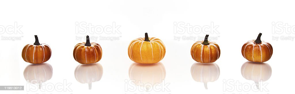 Pumpkins in a row on white background royalty-free stock photo