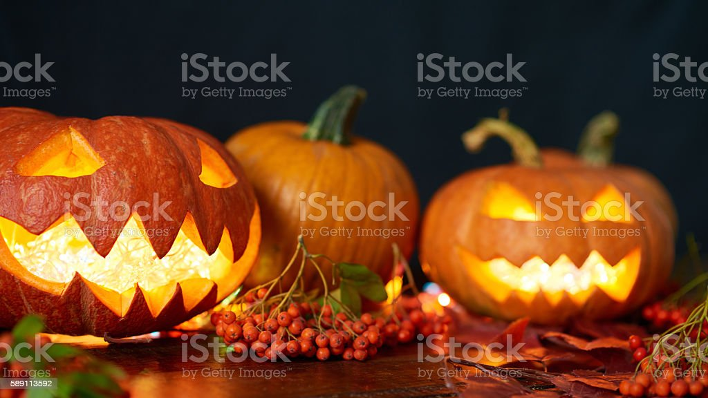 Pumpkins in dark stock photo