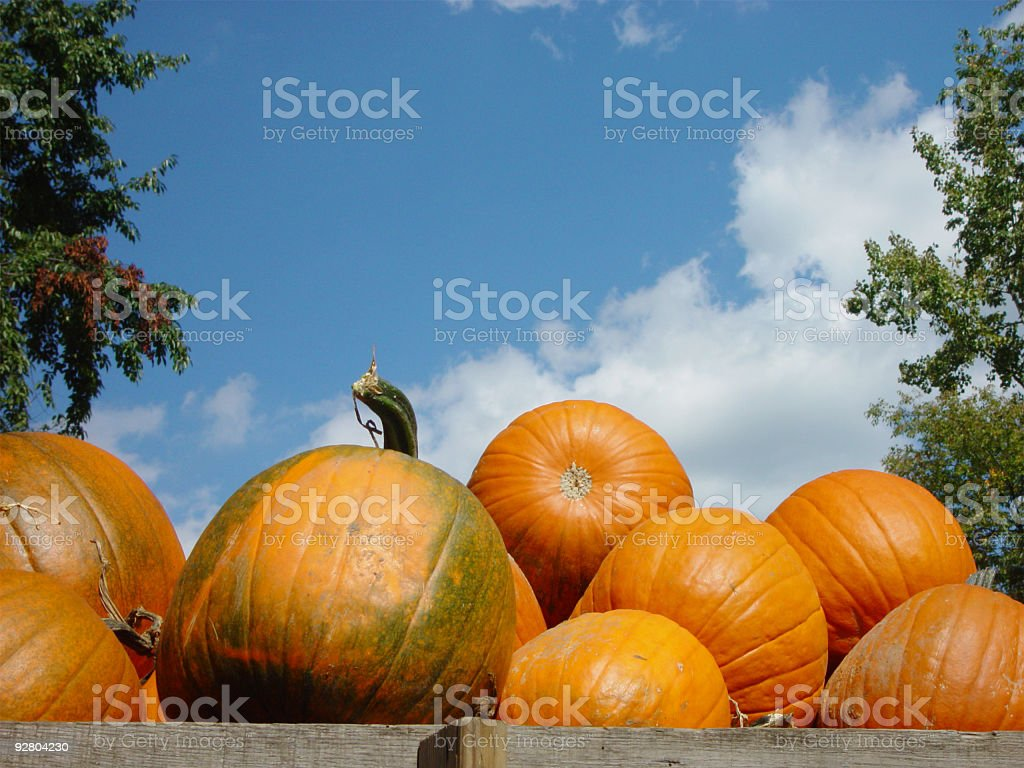 Pumpkins in Wagon royalty-free stock photo