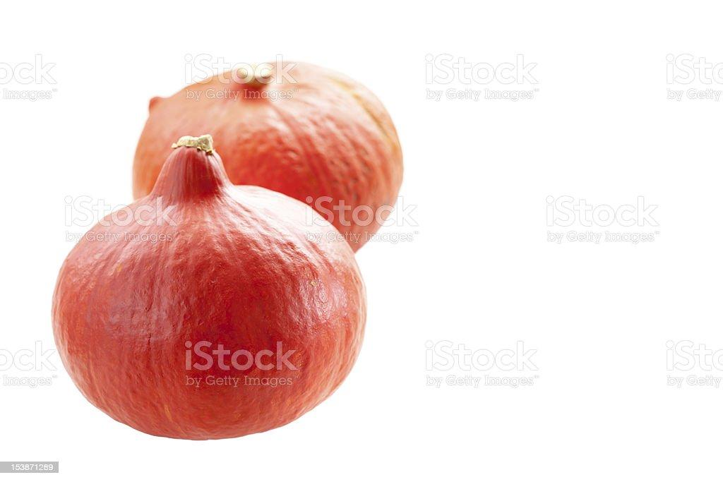 Pumpkins isolated royalty-free stock photo