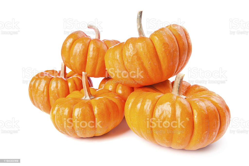 Pumpkins on a white background royalty-free stock photo