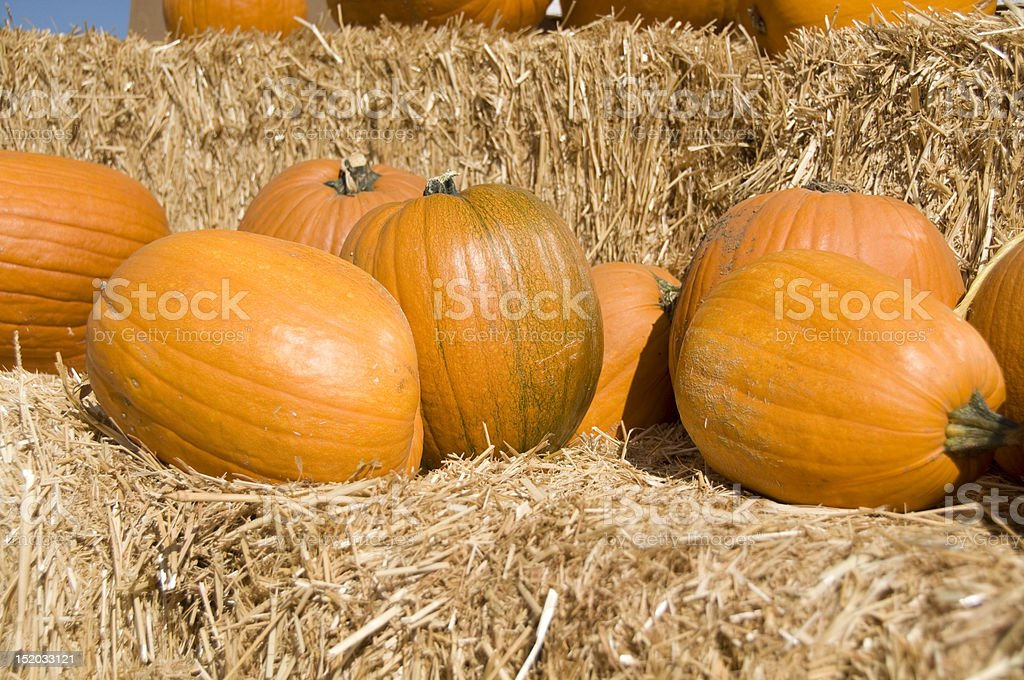 Pumpkins on bales of straw royalty-free stock photo