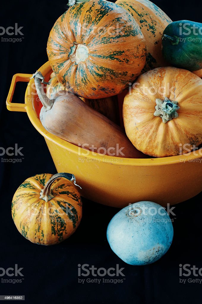 Pumpkins On Black  background royalty-free stock photo