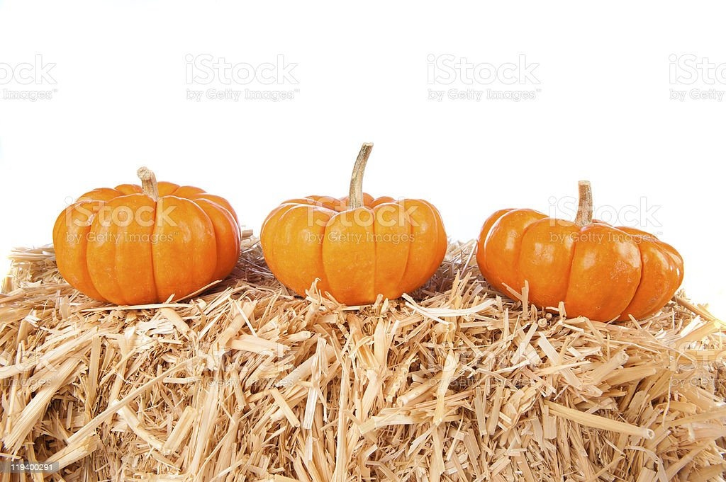 Pumpkins on hay with white background royalty-free stock photo