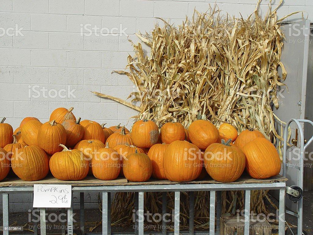 Pumpkins on sale royalty-free stock photo
