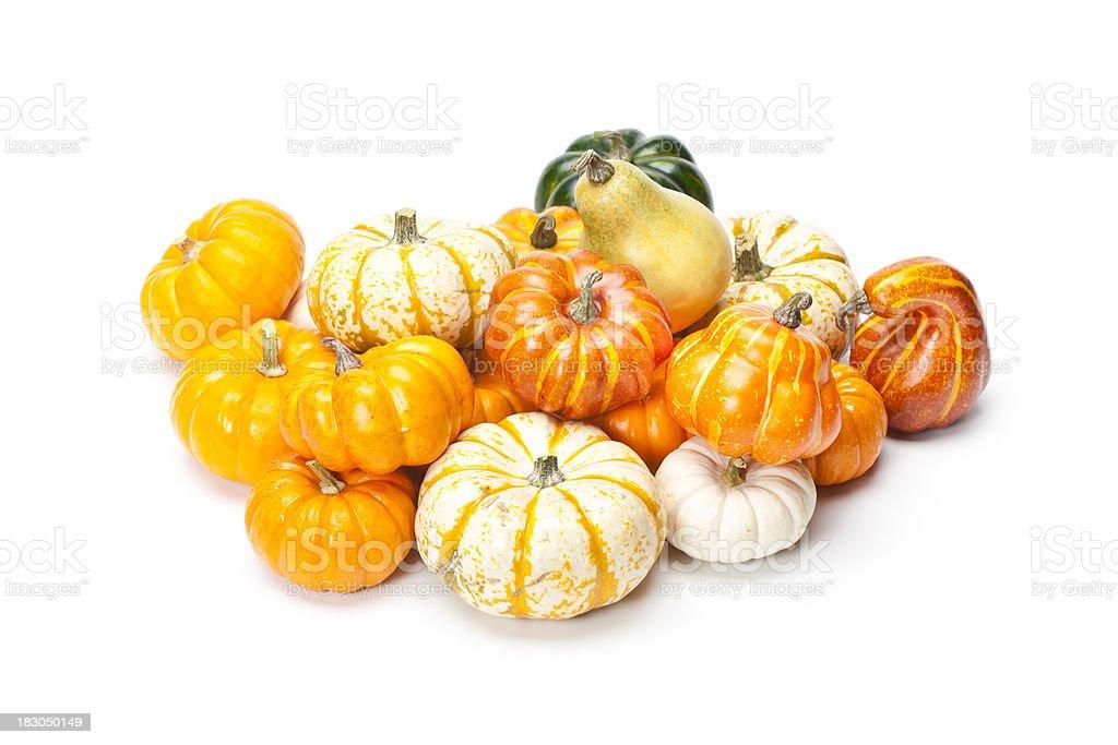 Pumpkins on white royalty-free stock photo