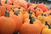 Pumpkins(18)