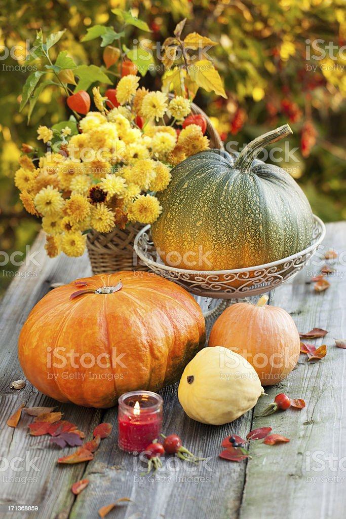 Pumpkins with autumn flowers royalty-free stock photo