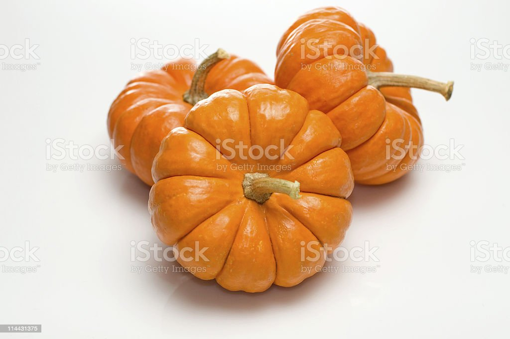 Pumpkins with Stems stock photo
