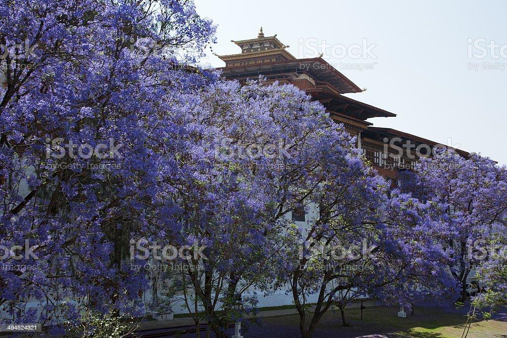 Punakha Dzong, Pungtang Dechen Photrang Dzong stock photo