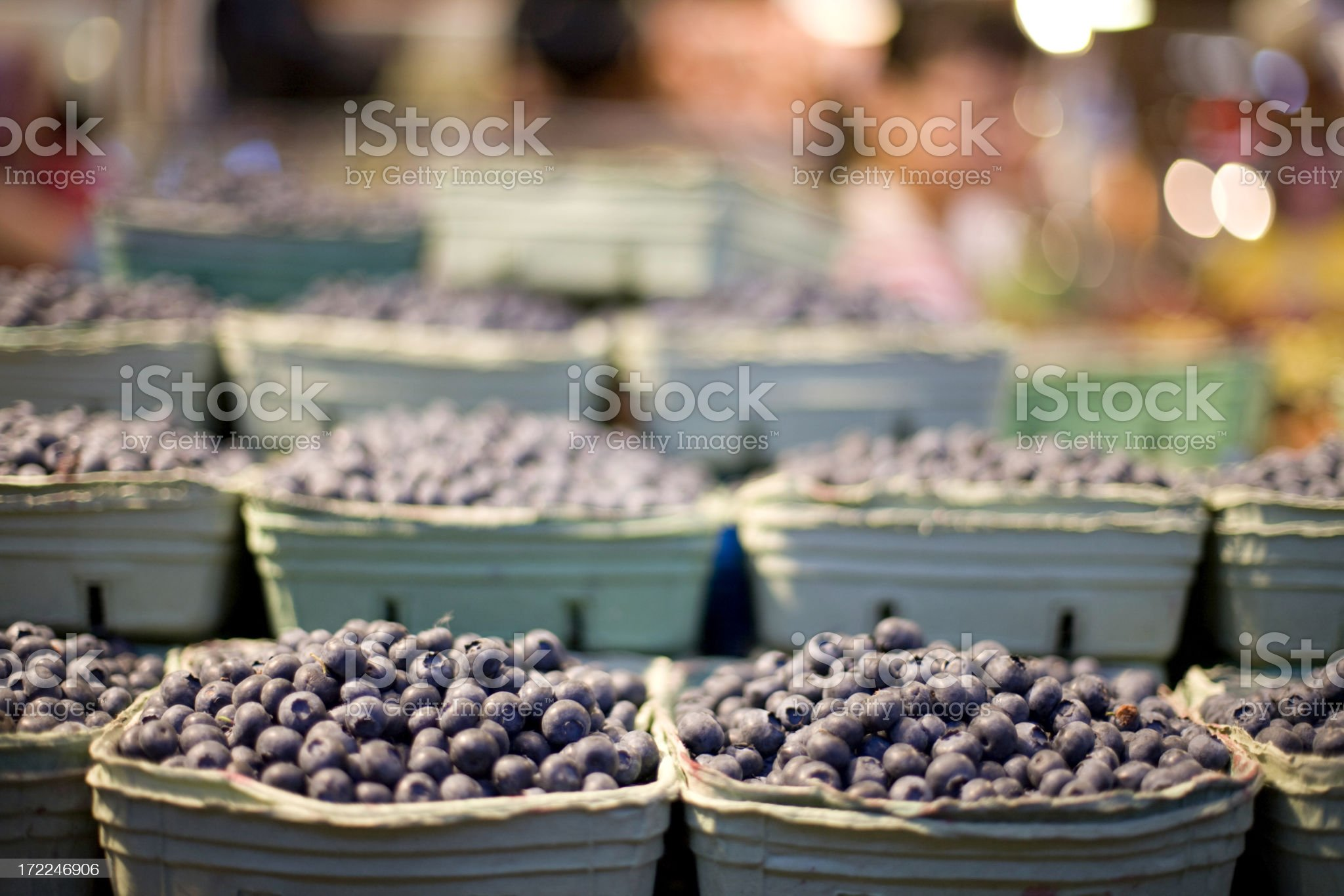 Punnets of Blueberries royalty-free stock photo