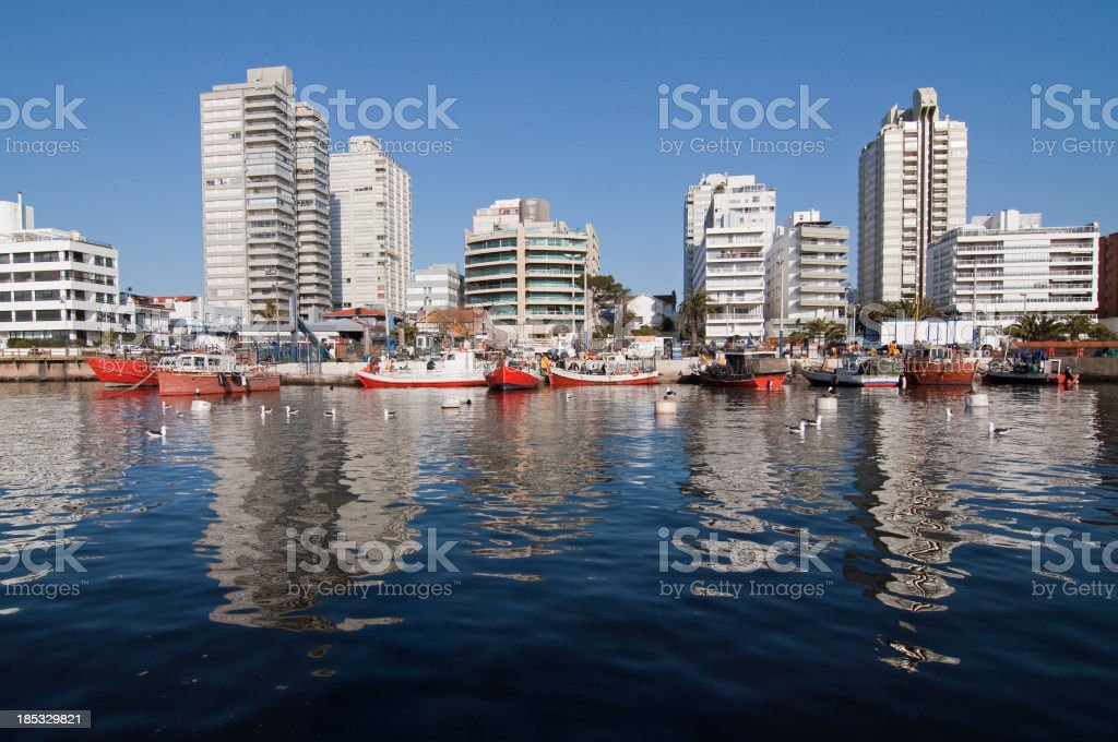 Punta del Este - Fishermen boats and downtown buildings stock photo