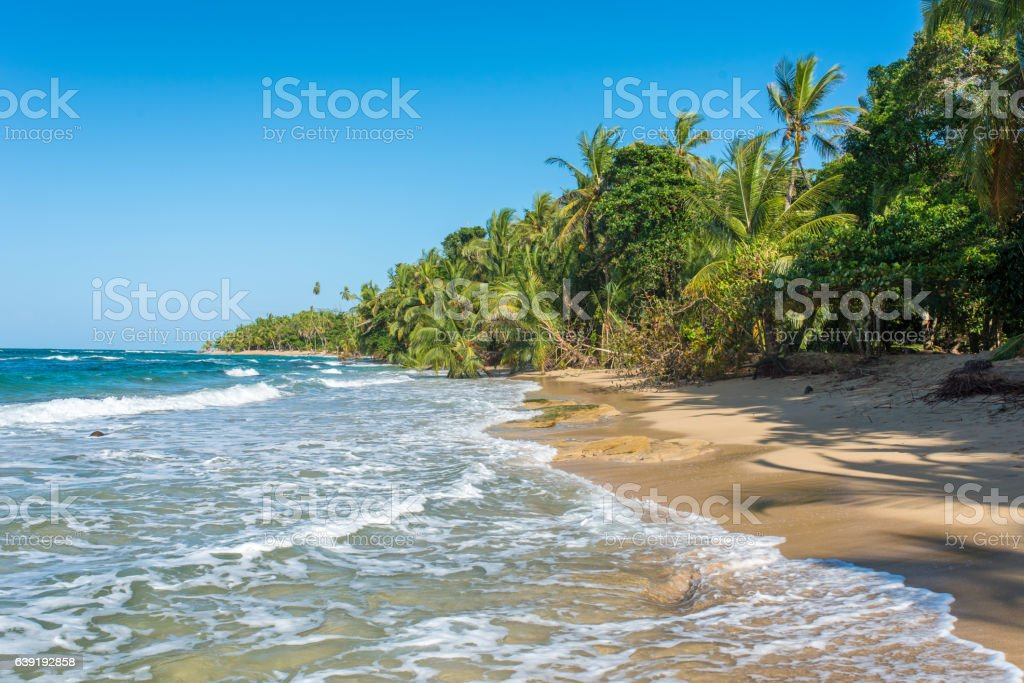 Punta Uva beach in Costa Rica, caribbean coast stock photo