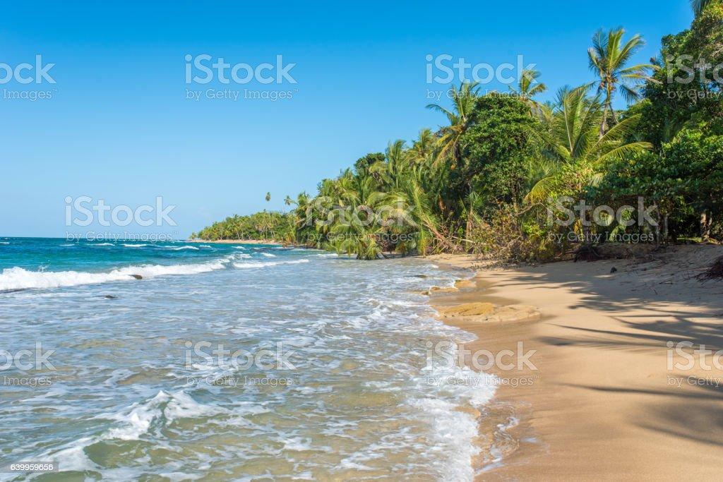 Punta Uva beach in Costa Rica, caribbean coast stock photo