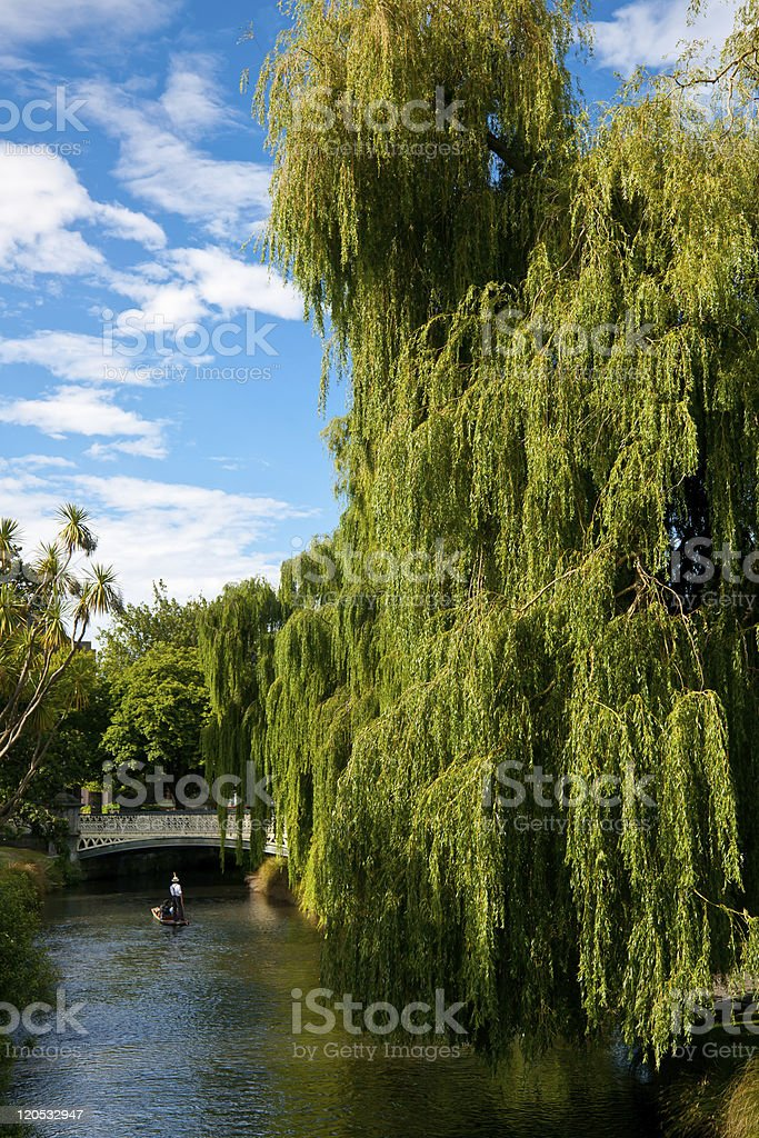 Punting on the Avon River stock photo