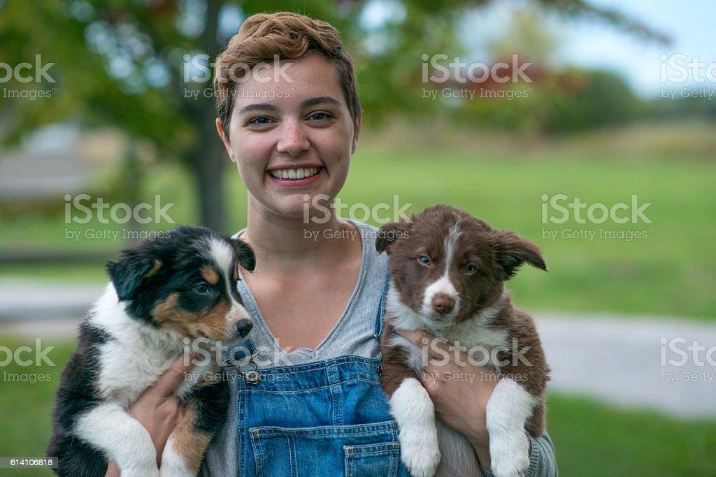 Puppies on a Farm stock photo